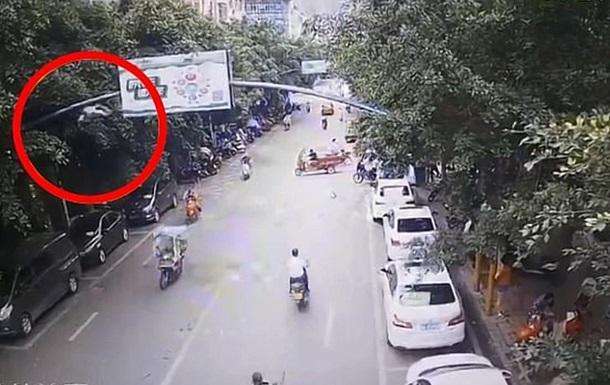 В Китае гусь упал на женщину и сбил ее со скутера