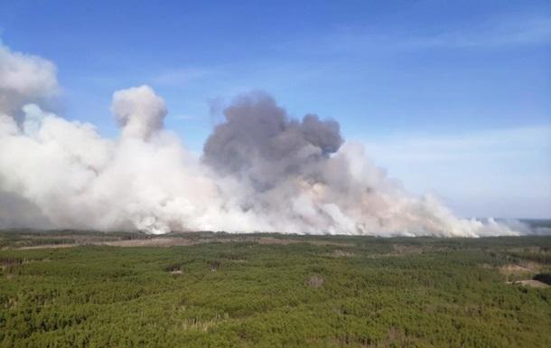 В Житомирской области горит лес