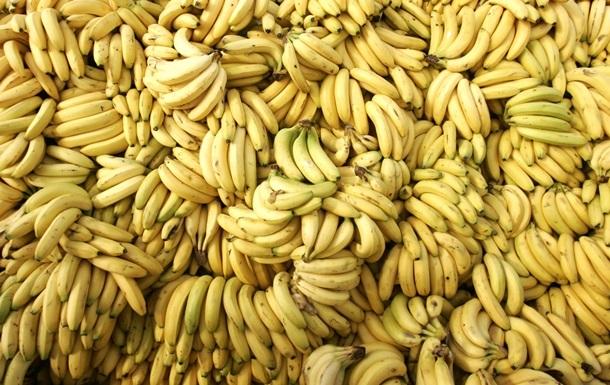 В Нидерландах обнаружили полторы тонны кокаина в грузе с бананами