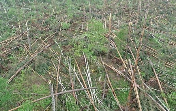 Ураган у Житомирській області призвів до надзвичайної ситуації