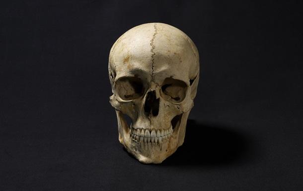 Ученые создали фото древнего человека с помощью его черепа