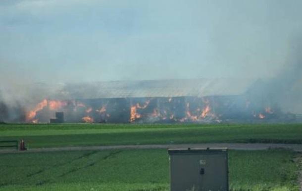 На птахофабриці у Швеції згоріли близько 100 тисяч курей