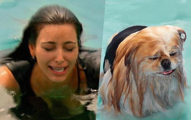 Ким Кардашьян сравнила себя с собакой рекламируя мультик