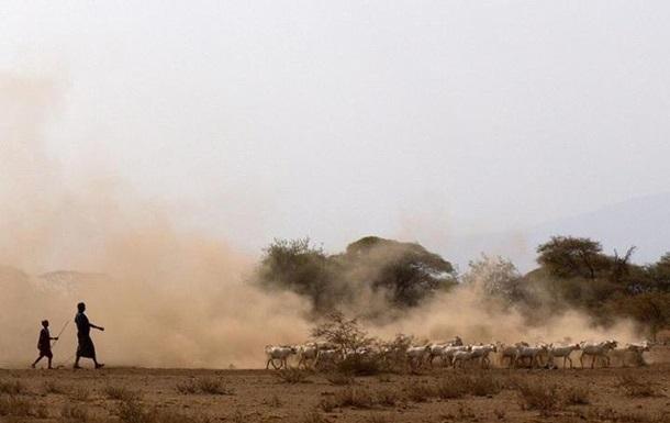 Названы первые пастухи на африканском континенте