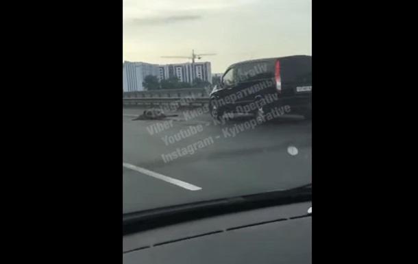 В Киеве на мосту Mercedes сбил насмерть лося