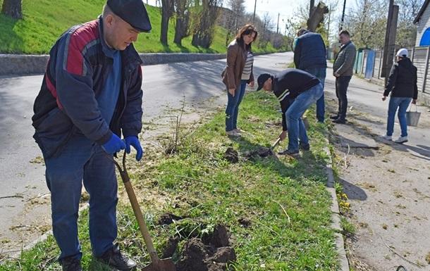 Міськрада Харкова закупила дерева по 300 тис. за штуку - ЗМІ