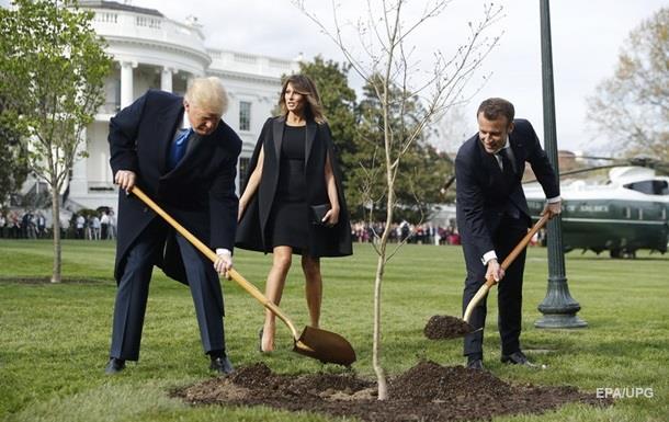 Трамп несберег дуб Макрона