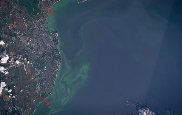 Зеленое Черное море и смрад. Все это в Одессе.