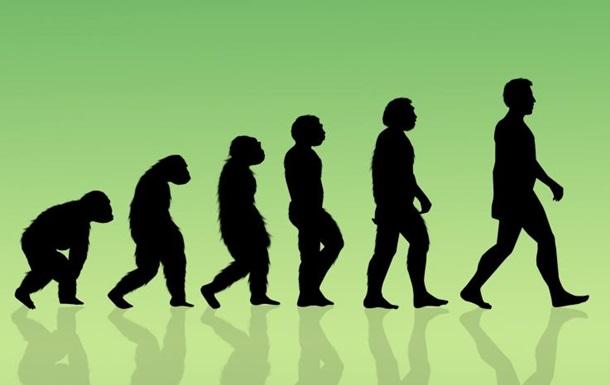 Дієта могла стати причиною еволюції людства