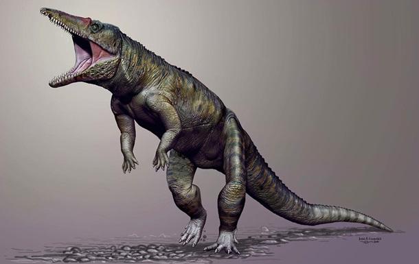 Ученые обнаружили останки древних травоядных крокодилов