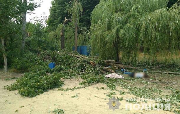 На Харьковщине дерево упало на отдыхающих, есть жертвы
