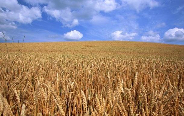 В Николаевской области горели поля с пшеницей
