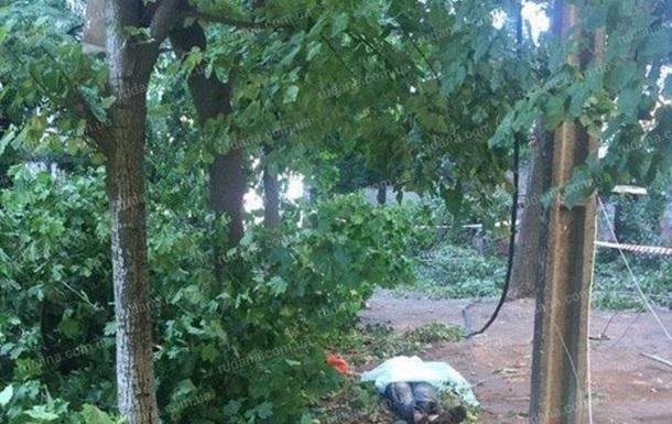 У Кривому Розі під час урагану загинули троє людей - ЗМІ
