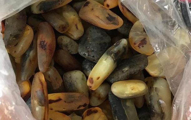 СБУ вилучила понад 40 кг бурштину на Закарпатті