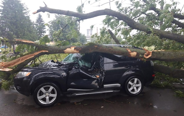 На Львовщине дерево упало на авто: двое пострадавших