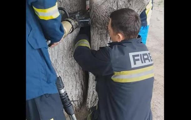 Спасатели освобождали девочку, застрявшую между деревьями в Харькове