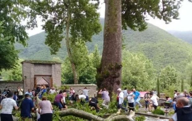 Названа причина падіння на туристів гілки 500-річного дерева в Азербайджані