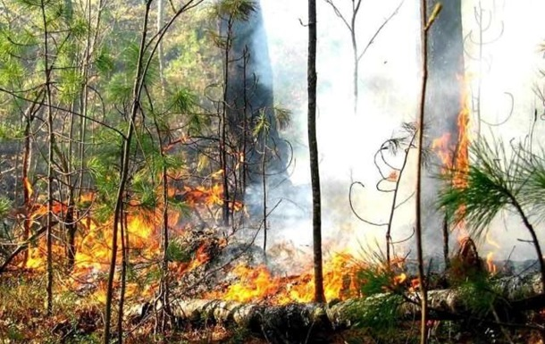В Україні оголосили надзвичайну пожежонебезпеку