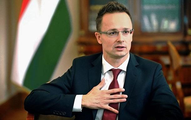 В Угорщині прокоментували агітацію на Закарпатті