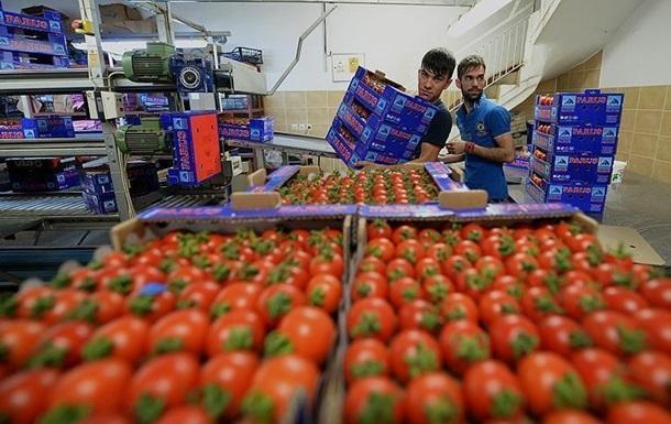 Украина импортировала рекордное количество помидоров и огурцов