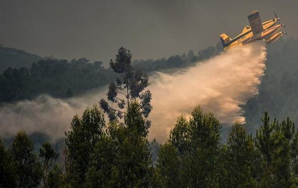 Тисячі вогнеборців борються з лісовими пожежами у Португалії