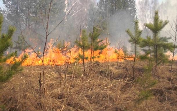 В Днепропетровской области объявили ЧП из-за пожаров