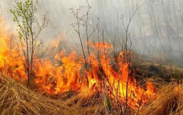 В загоревшейся сухой траве на Винничине погибла пенсионерка