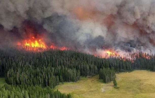 В пяти регионах России ввели режим ЧС из-за лесных пожаров