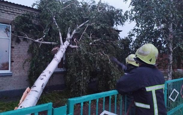 В Запорожской области шквальный ветер повалил десятки деревьев