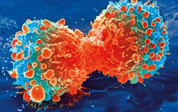 Ученые нашли способ остановить разрушение иммунной системы раком