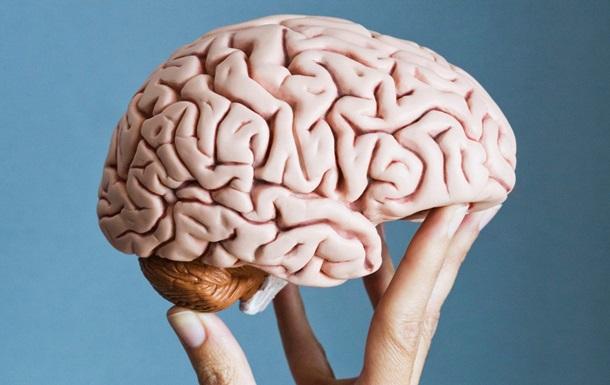 Врачи показали изменение в мозге человека, принимающего кокаин