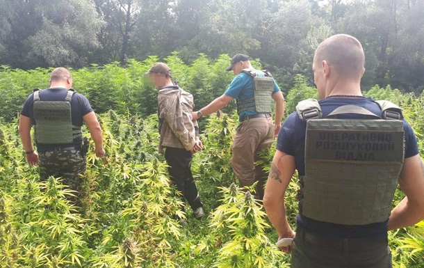Правоохоронці попередили контрабанду наркотиків до Криму і РФ