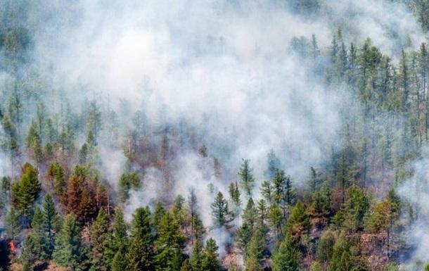 У Сибіру не вщухають лісові пожежі