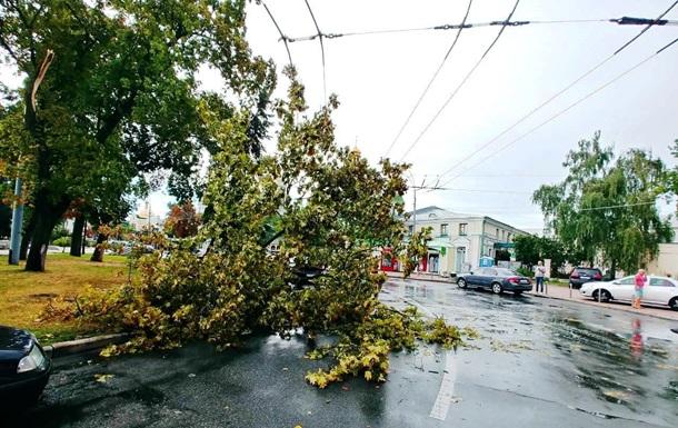 У Києві ураган повалив 120 дерев
