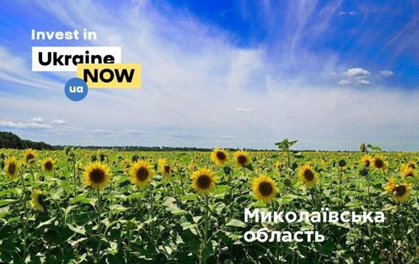 Чемпионат по инвестициям: Николаевская область