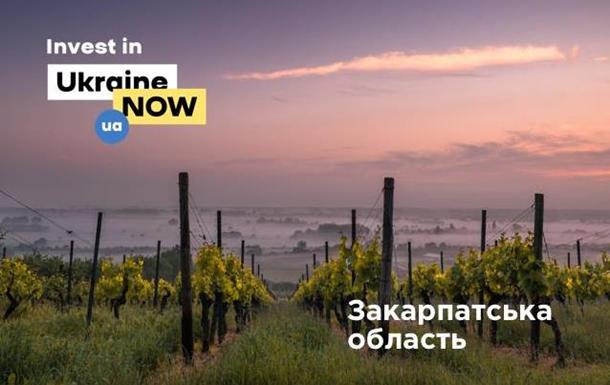Чемпионат по инвестициям: Закарпатская область