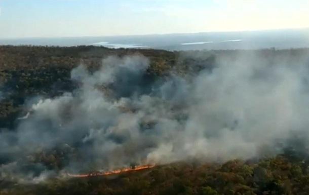В лесах Бразилии рекордное количество пожаров