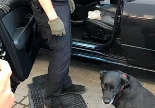 СБУ разоблачила контрабандиста, ввозившего наркотики из Западной Европы