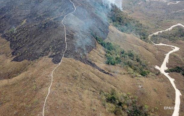 У Бразилії збільшилася кількість пожеж