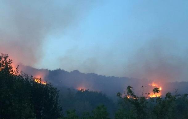 На Закарпатті масштабна пожежа: горять виноградники і ліс