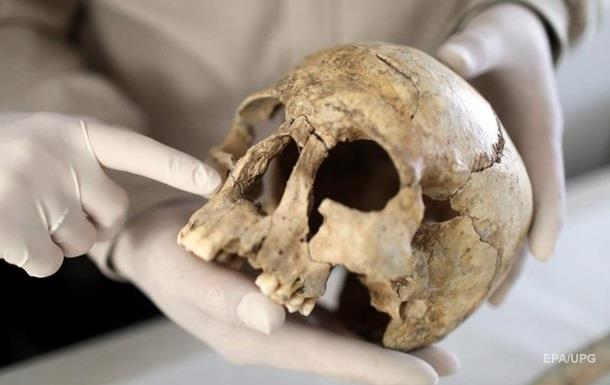 Найден череп древнейшего прачеловека
