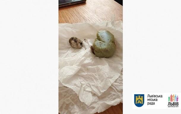Во львовской школе ученик попал камнем в польского дипломата