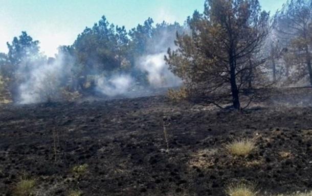 Жители Херсонщины могут уберечь леса от пожаров