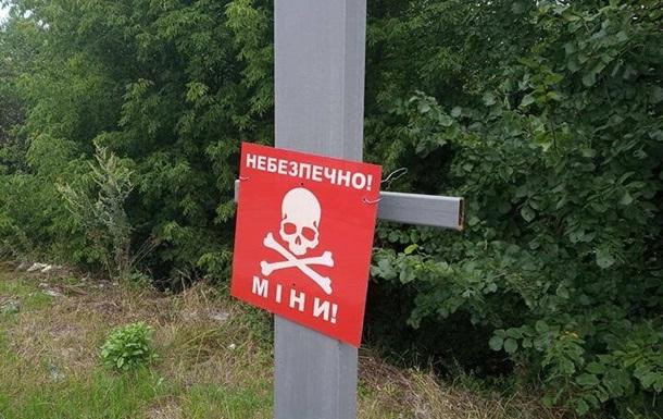 В  ЛНР  мужчина подорвался на мине во время покоса травы