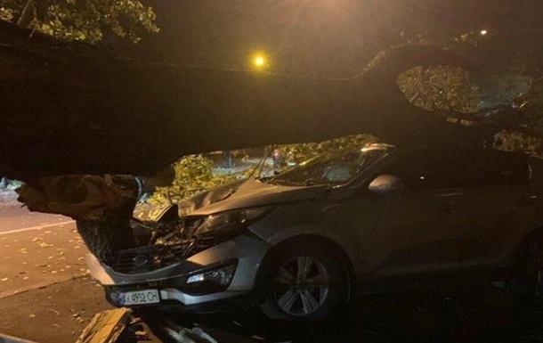 Непогода в Харькове: поваленные деревья, покореженные машины