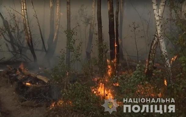 Пожежа під Чорнобилем: затримали підозрювану в підпалі