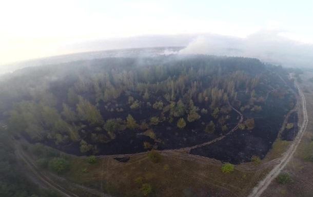 На Полтавщині згоріли десятки гектарів лісу
