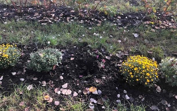 У Києві вкрали кущі та квіти з оновленого парку
