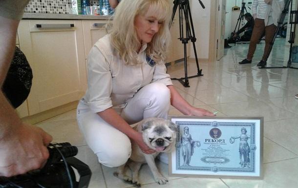 Умерла самая старая собака в Украине