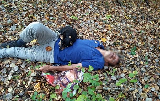 На Закарпатті в лісі собака врятував життя господареві